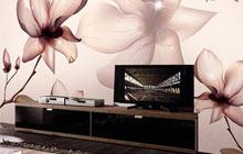 手绘电视背景墙 手绘电视背景墙效果